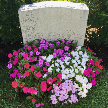 Newton Cemetery Ground Cover Impatien flower bed