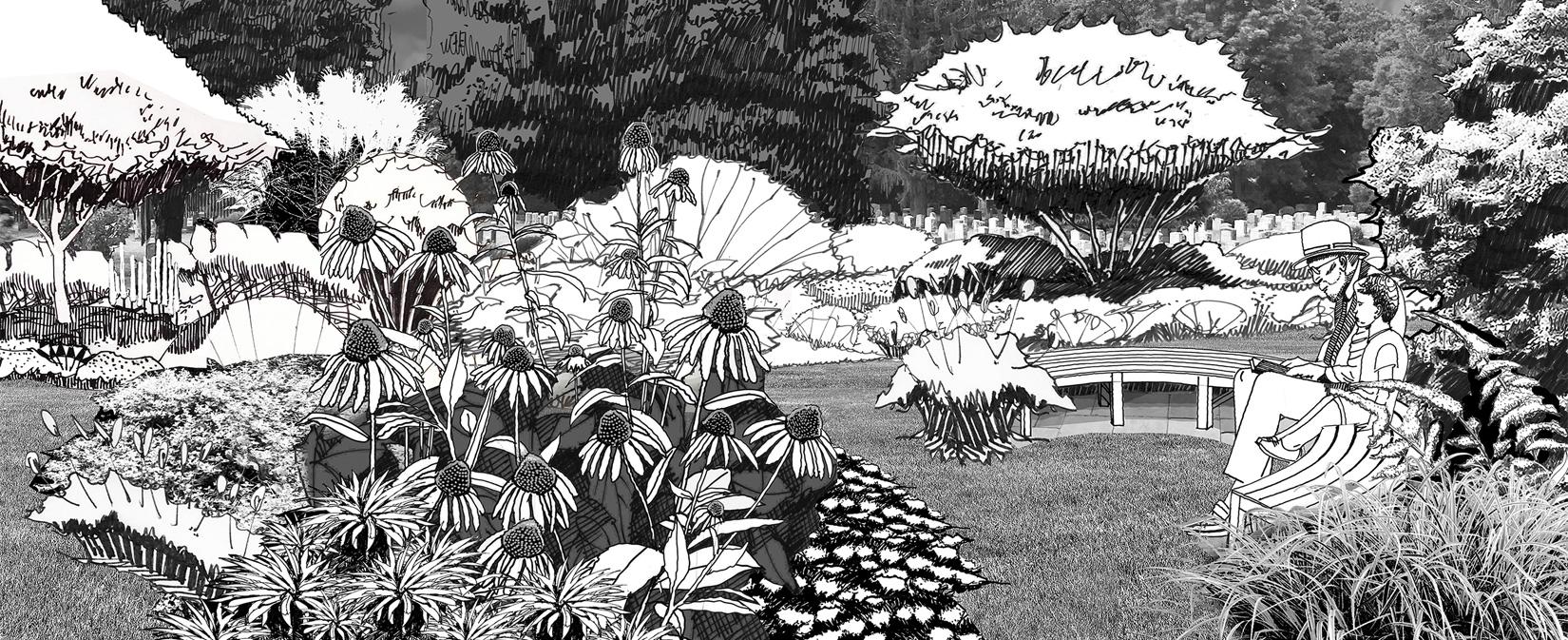 Newton Cemetery Pollinator Garden Sketch by CRJA H_Aikman