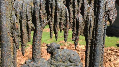 Whipple-Beal-Fence