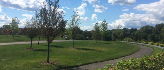 Newton Cemetery urn garden plot memorial curve