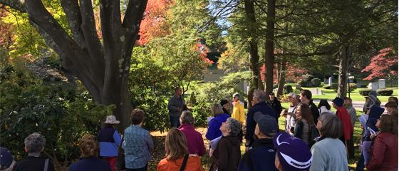 Fall tree Tour  at Newton Cemetery