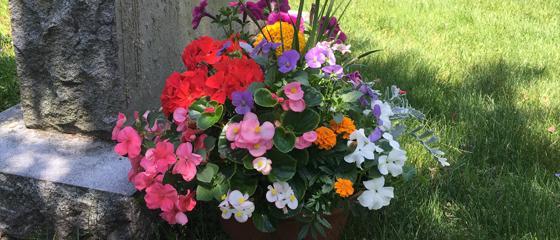 Newton Cemetery Floral Tributes